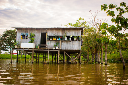amazon river: House at the amazon river