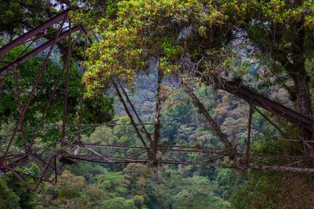 bridge in nature: Old bridge in the nature. Stock Photo