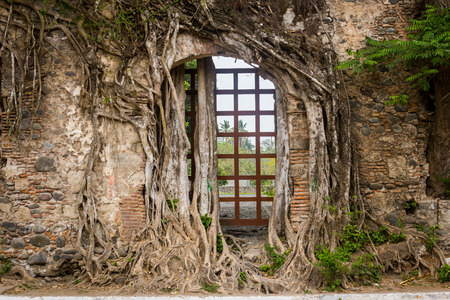 hdri: Hernan Cortes house ruins, with giant tree roots. Stock Photo