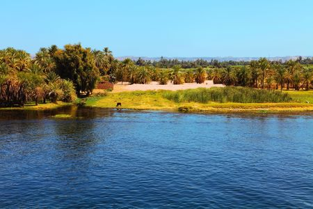 Banks of the Nile Stock Photo