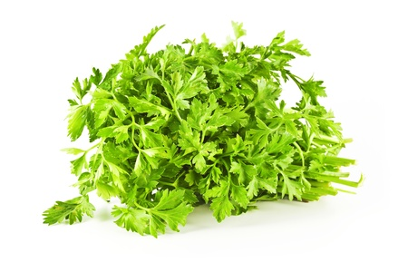 Big beautiful bunch parsley on a white background. Stock Photo - 11109790