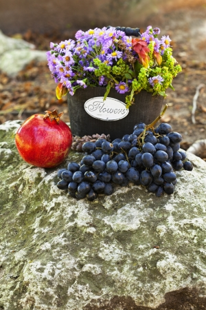 Wooden baskets with wild flowers, a pomegranate, a cone and black grapes on the rock  photo