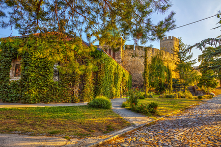 city park skyline: Old Church of Ruzica and Kalemegdan Fortress, HDR image.