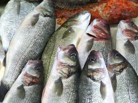 Sea fishes on the market