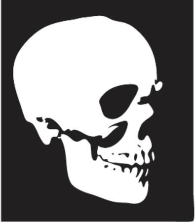 Human skull - vector illustration