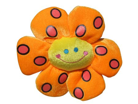 Plush orange  flower - with clipping path