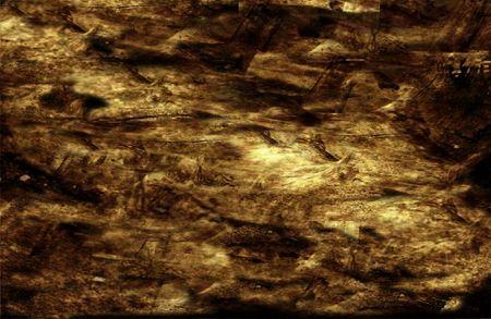 woody: Grunge woody background - digital illustration Stock Photo