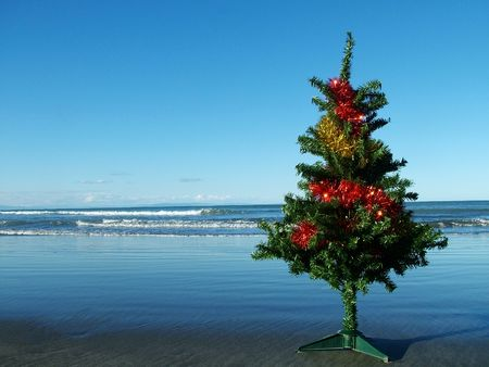 A christmas tree on a dark sandy beach Stock Photo