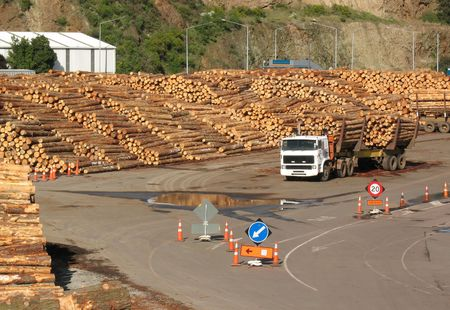 loaded: A timber yard and truck loaded with logs