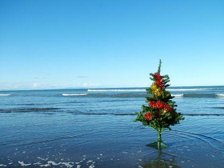 A Christmas tree on a dark sandy beach Stock Photo - 2355576