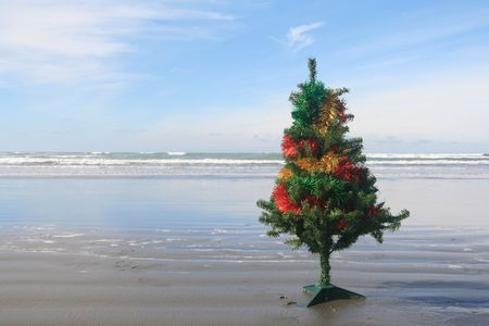 southern: A decorated Christmas tree on a beach in New Zealand