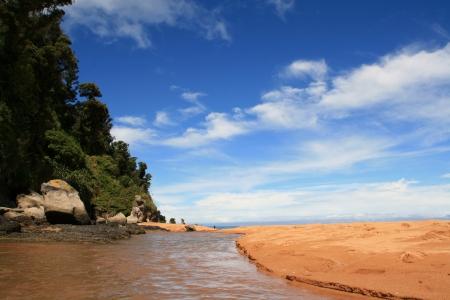 tasman: Totaranui beach in Abel Tasman National Park, New Zealand
