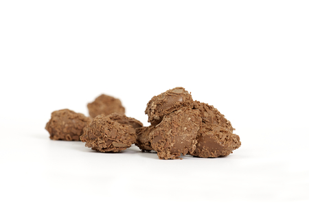 Hand Made chocolate truffles Stock Photo