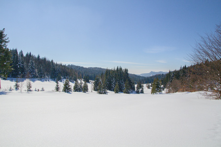 winter - Slovak paradise National park, Slovakia