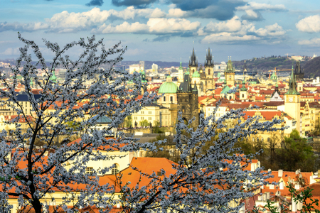 Beautiful spring time at Prague. Colorful view from Petrin yard. Czech republic