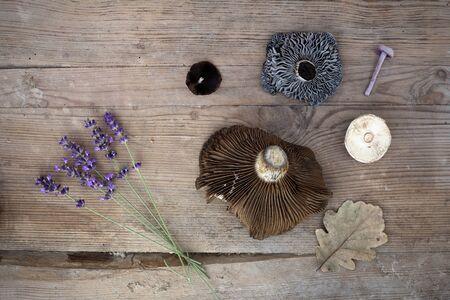 Artículos de otoño lavanda, hongos, hoja marrón en el escritorio de madera