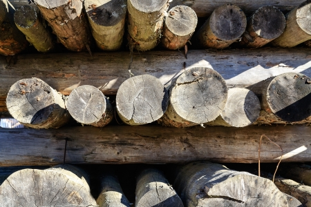 Wooden logs stored and seasoned for on the stack ready to start building a new house in Zakopane in Poland photo
