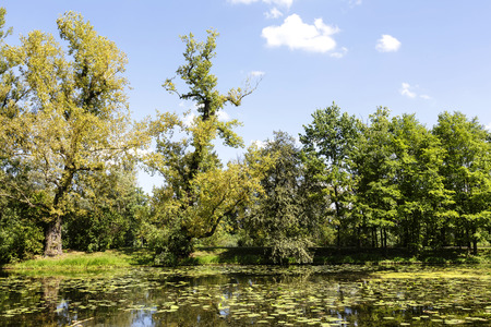 sobieski: WARSAW, POLAND - AUGUST 20, 2014: Lake, Jezioro Wilanowskie seen from the garden built in the 2nd half of the 17th century and belonging to the suburban residence of King Jan III Sobieski