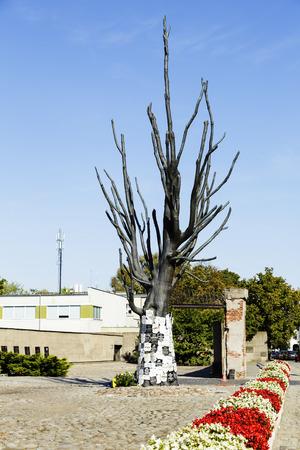 zeugnis: Warschau, Polen - 24. September 2014: Pawiak Prison Museum, Baum aus Bronze, Kopie des ber�hmten Ulme, ein Zeuge der Geschichte, Epitaph Zeichen wurden dort von den Familien der Opfer seit 1945 platziert