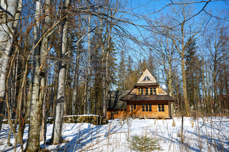 nineteenth: ZAKOPANE, POLAND - MARCH 09, 2015: Traditional wooden house in Zakopane style of the nineteenth century and forest belongs to a known family of Chalubinski