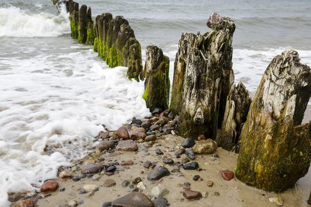 breakwaters: Very old wooden breakwaters at the sea beach in city of Kolobrzeg in Poland