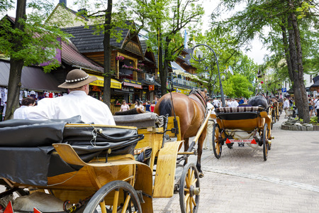 zakopane: ZAKOPANE, POLAND - JUNE 07, 2015: Harnessed horses stands and waits for tourists, at the Krupowki street, the main shopping area and pedestrian promenade in the downtown