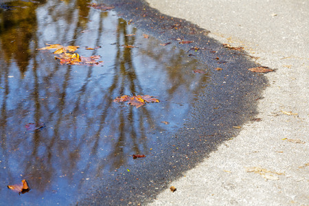 drowned: Spring puddle on the path in which drowned still autumn leaf