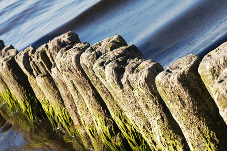 Old breakwaters in the sea in Kolobrzeg are covered with seaweed and a gentle waves of the sea can be seen along them