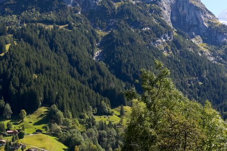 A small green valley hidden in the forest by the wooded slopes of the Alps and near the rocky cliffs of a large mountain. This view can be seen from Grindelwald in Switzerland. Stock Photo