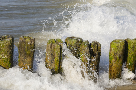 These wooden poles are used to break sea waves in order to protect the coast, just like here in Kolobrzeg , Poland