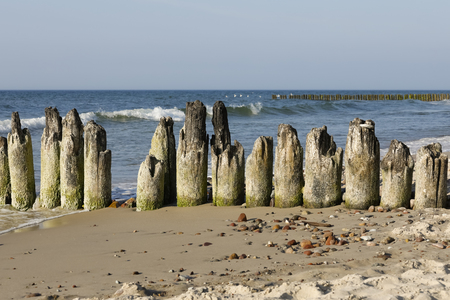Old wooden breakwater on the coast of the Baltic Sea. These wooden breakwaters serve to protect the coast against the sinister effects of destructive sea waves in Kolobrzeg in Poland 스톡 콘텐츠