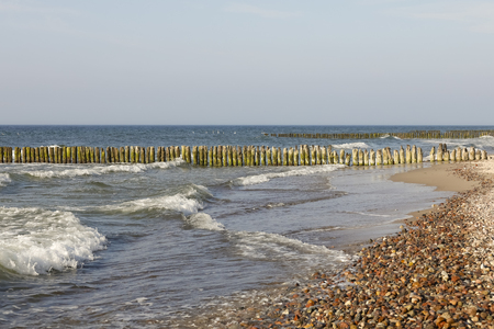 Thick wooden breakwaters at the sea coast. These wooden breakwaters serve to protect the coast against the sinister effects of destructive sea waves in Kolobrzeg in Poland