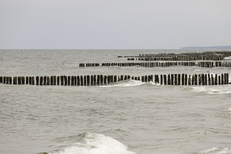 Baltic sea coast. These wooden breakwaters serve to protect the coast against the sinister effects of destructive sea waves in Kolobrzeg in Poland