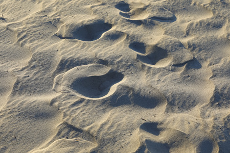 Sandy beach with footprints on the. This sandy surface was observed on the Baltic beach in Kolobrzeg, Poland.