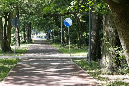 There is a bicycle path that leads through the park, among the trees.