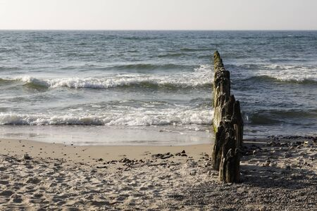 Waves of the Baltic sea by the shore. These wooden breakwaters serve to protect the coast against the sinister effects of destructive sea waves in Kolobrzeg in Poland