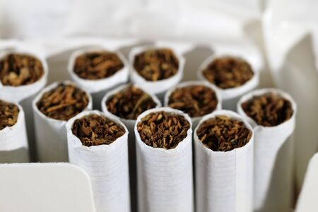 A pack of cigarettes is open and there are several cigarettes without filter.