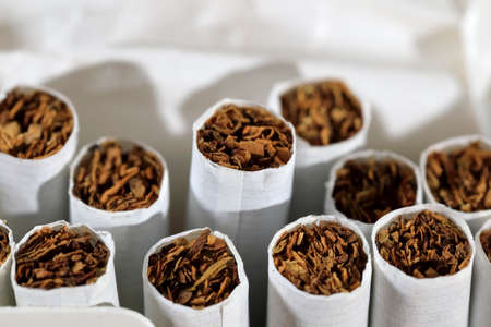 Several cigarettes without filter are visible in an open box.