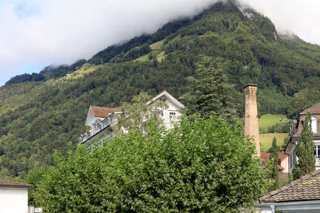 The buildings look like they are hidden in lush vegetation. Such a view can be seen in the town of Gersau in Switzerland.