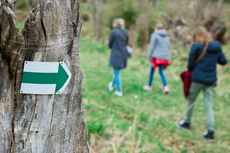 Tourist on walking trail in th forrest - green arrow showing the right direction of the trip