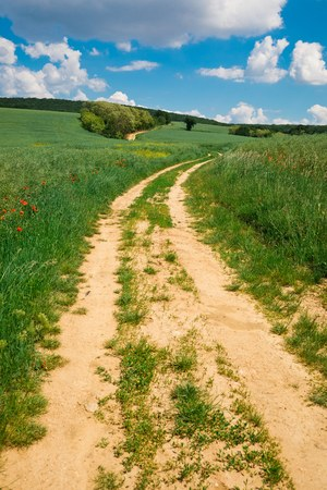 Cart road leading through colorful nature during spring, leads to fairytale Stock Photo