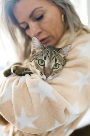 Woman playing with cat, home pet looking into camera