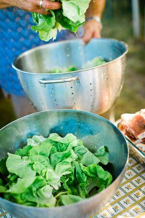 Preparing lettuce in steel bowl, washing before use