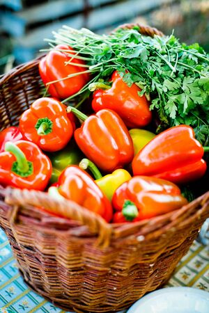 Basket with peppers and parsley, outdoor picnic preparation