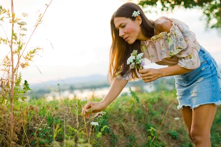 Young woman dressed in summer dress gather meadow flowers during sunset time Фото со стока