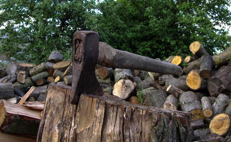 An ax stuck in a stump, in background a heap of chopped wood