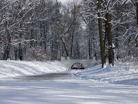 Bridge on a frozen stream between snow-covered trees Standard-Bild