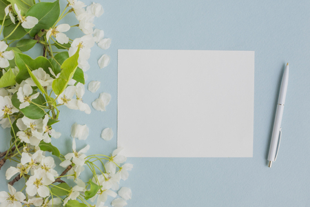 Mockup white greeting card with white spring flowers and light blue background