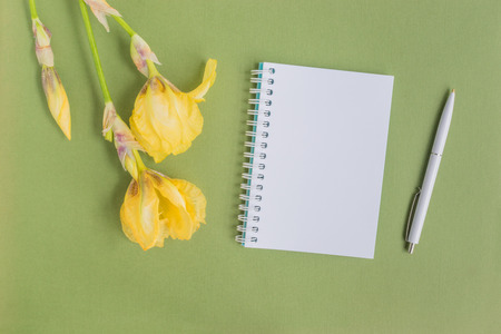 Mockup notebook with iris flower and green background empty space for your text, top view