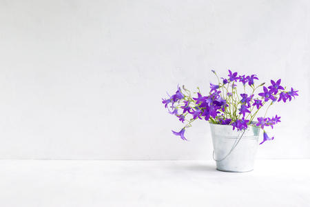 Summer flowers in a metal bucket on a light background. Interior decor